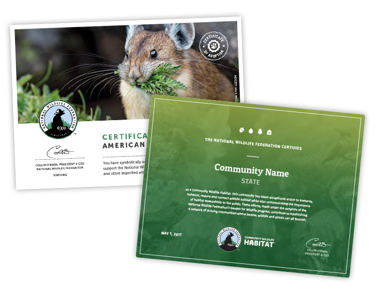 NWF Certificates